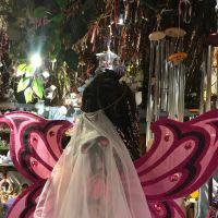 103 fairy