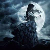 Moon Llight