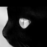 « dark_side »